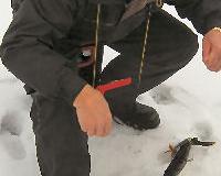 fiskare2_06